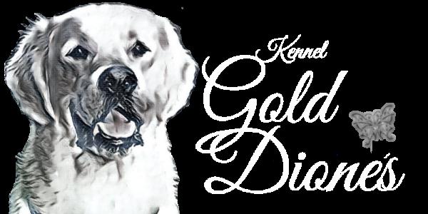 Logotyp för kennel Gold Dione´s, uppfödare av golden retriever
