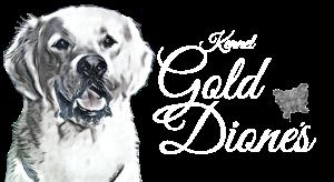 Logotyp för kenneln Gold Dione's för uppfödning av golden retriever i Stockholm